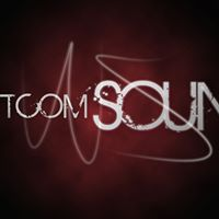Whatcom Sound logo