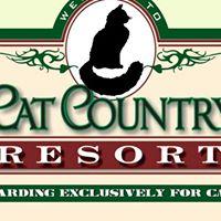 Cat Country Resort logo