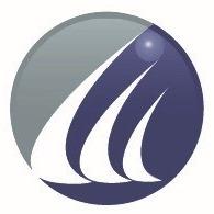 Ludeman Capital Management logo