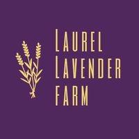 Laurel lavender farm logo