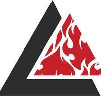 Bellingham BJJ logo
