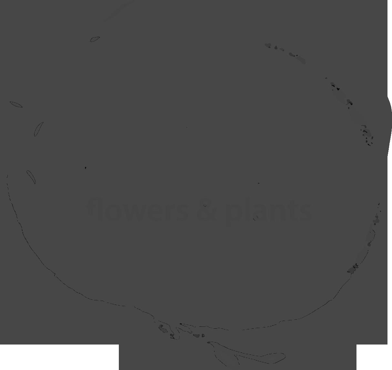 Olio Flowers & Plants logo