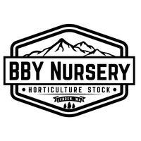 BBY Nursery logo