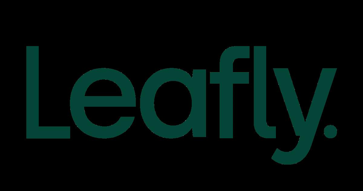 Star Outlet logo