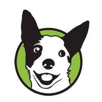 The Pawsitive Pooch llc logo