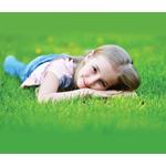 Pride's Lawn Care logo