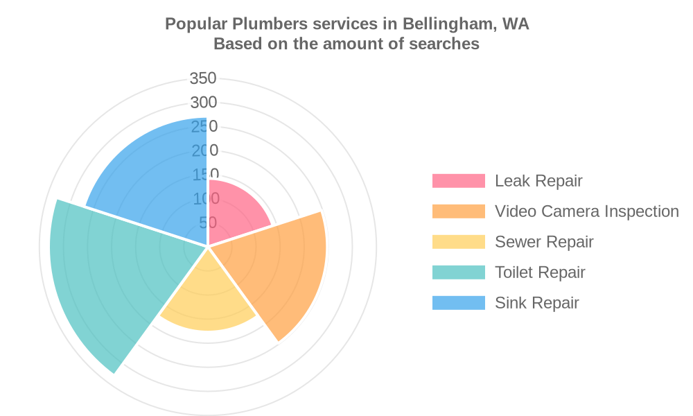 Popular services provided by plumbers in Bellingham, WA
