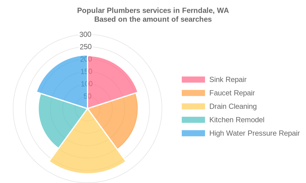 Popular services provided by plumbers in Ferndale, WA