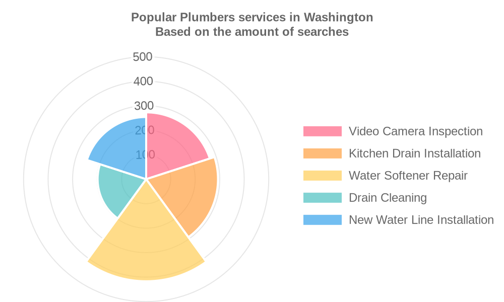 Popular services provided by plumbers in Washington
