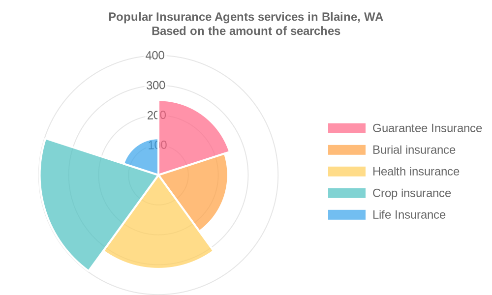Popular services provided by insurance agents in Blaine, WA