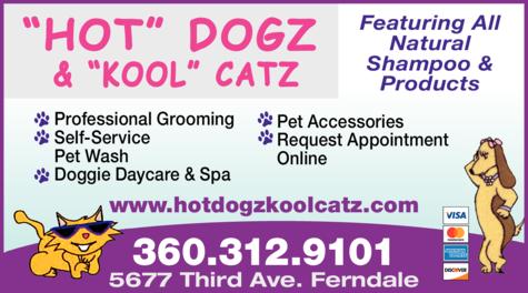Print Ad of Hot Dogz & Kool Catz