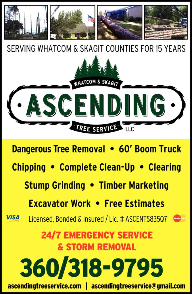 Ascending Tree Service Llc logo