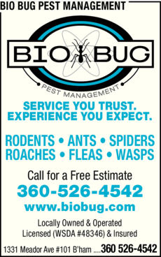 Print Ad of Bio Bug Pest Management