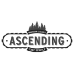 Ascending Tree Service Llc logo